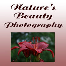 Nature's Beauty ad